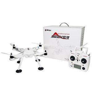 WL Toys 2.4G 6-Axis V303 Seeker  -