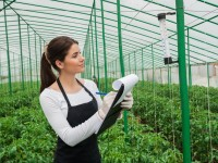 Importance of Agricultural Robots